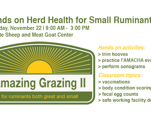 Hands on Herd Health for Goats and Sheep Workshop to be held in Manhattan on Nov. 22nd
