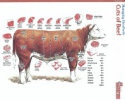 Meat Charts and Cutting Card