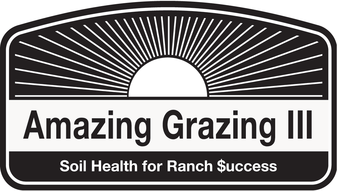 Amazing Grazing 3 logo black and white