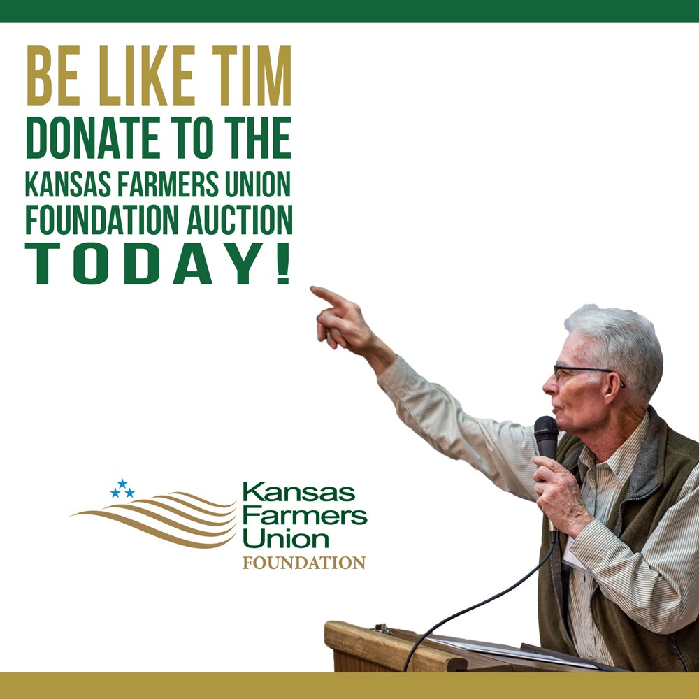 Be like Tim 2015 KFUF Auction Promo