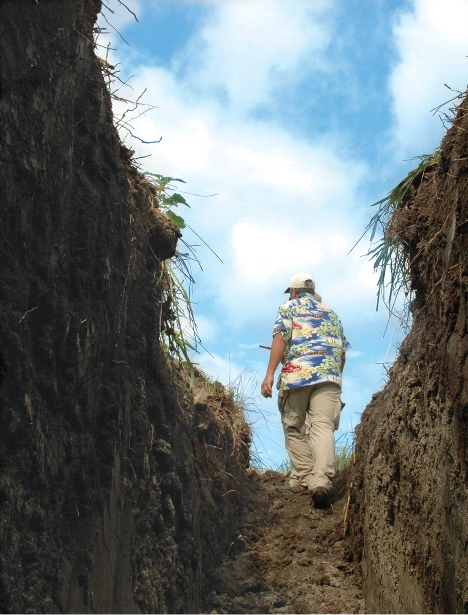 Soil pit: looking up to blue sky