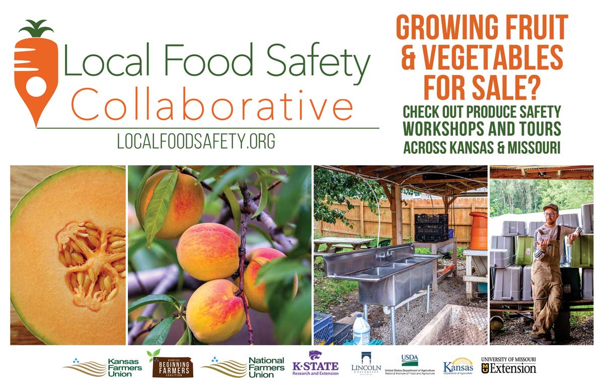 Local Food Safety Postcard