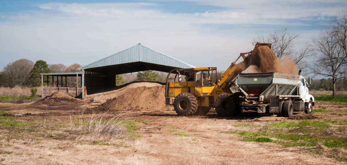 Poultry litter being loaded on farm.