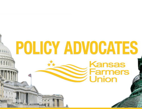 KFU Policy Advocates 2020: Apply Today