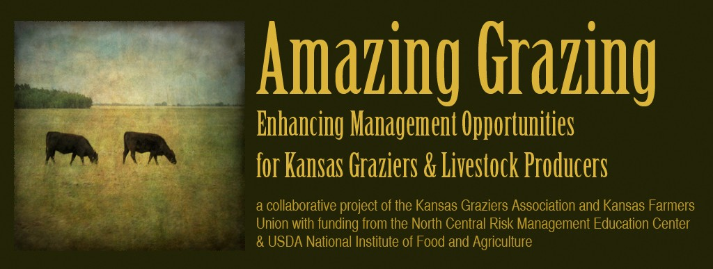 Amazing Grazing Project banner