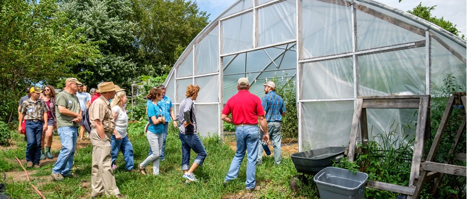 Summer Fun Farm Tour One: Green Thumbs Up Produce