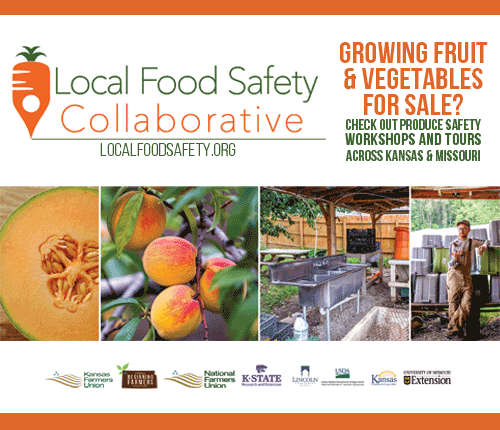 Learn more about the Local Food Safety Collaborative Project