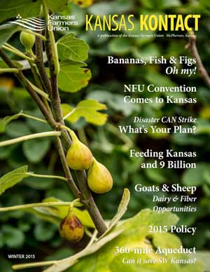 Kansas KONTACT Winter 2015 Cover