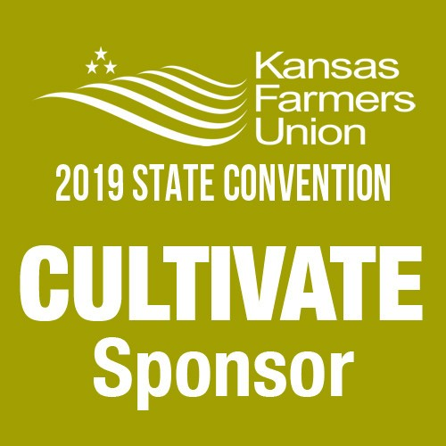Cultivate Sponsorship of 2019 KFU State Convention