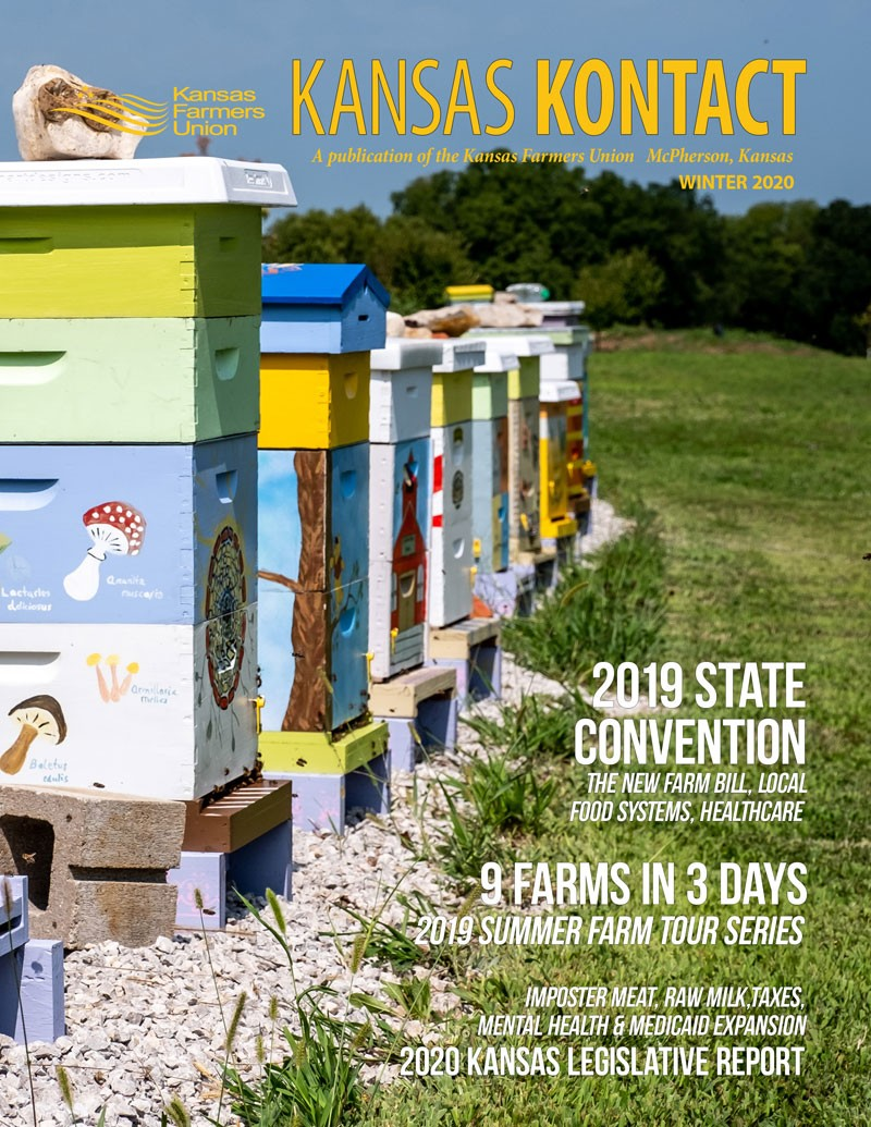 Cover of the Kontact Winter 2020 Beehives